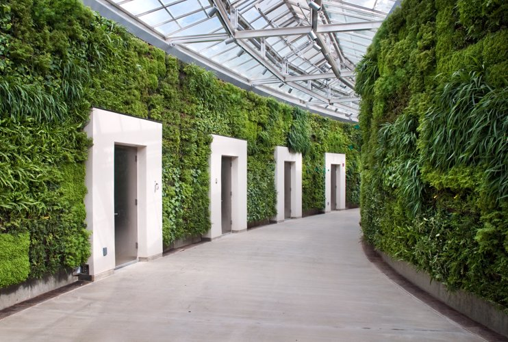 """green wall"", ""living wall"", Green Wall Living Architecture, Kim Wilkie Associates, largest green wall, Longwood Gardens, Vancouver green wall"