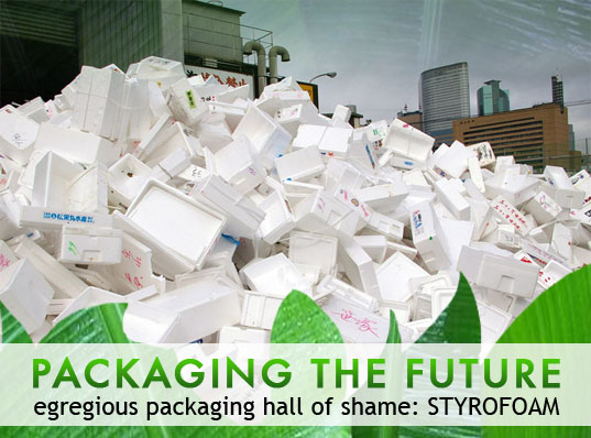 sustainable design, green design, packaging the future, green packaging, styrofoam, environmental design, biodegradable packaging