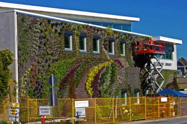 living wall, green wall, green over grey, canada, green design, eco design, sustainable building