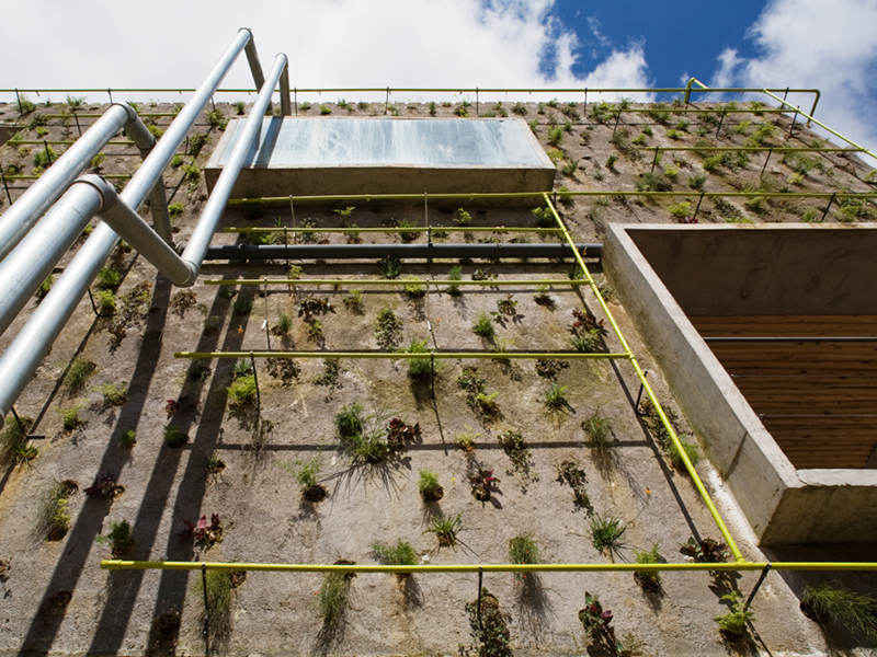 harmonia 57, triptyque, sao paulo, living wall, green roof, eco office, green design, sustainable architecture