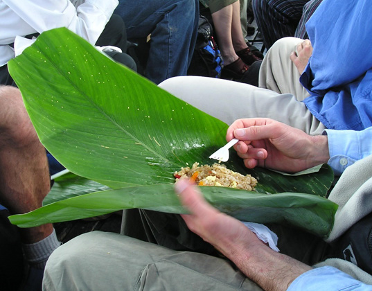 packaging the future, green packaging, natural packaging, sustainable design, green design, banana leave packaging, eating with banana leaves, green food packaging