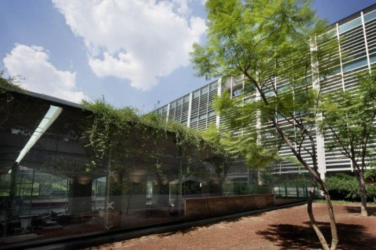 biblioteca vasconelos, mexico city, public library, botanical garden, alberto kalach, green building, sustainable architecture