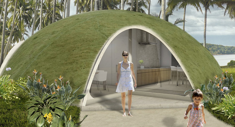 http://inhabitat.com/wp-content/blogs.dir/1/files/2010/12/binishell-6.jpg
