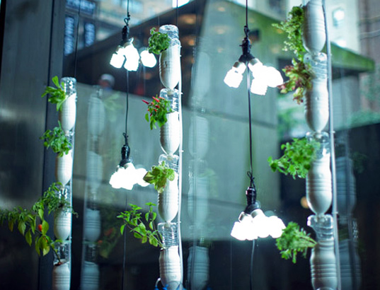 Windowfarms: Grow An Edible Hanging Indoor Garden This Winter! | Inhabitat    Green Design, Innovation, Architecture, Green Building