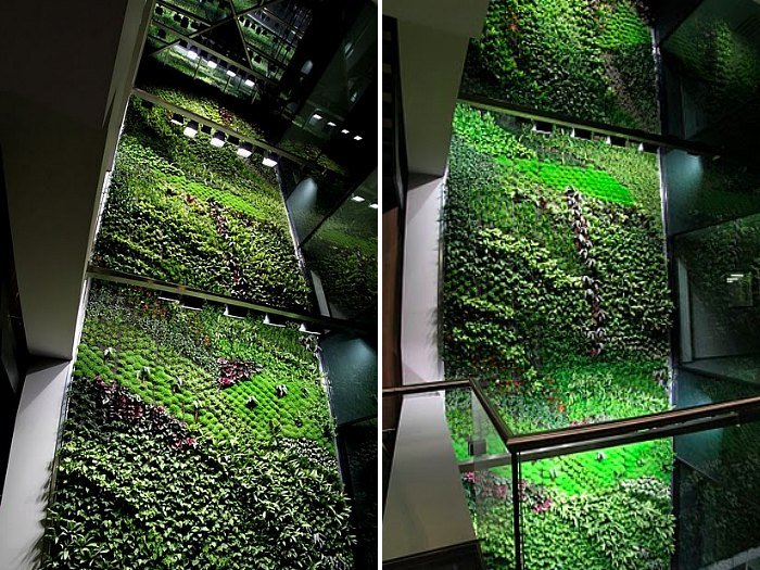 Image Result For How To Start A Hanging Garden