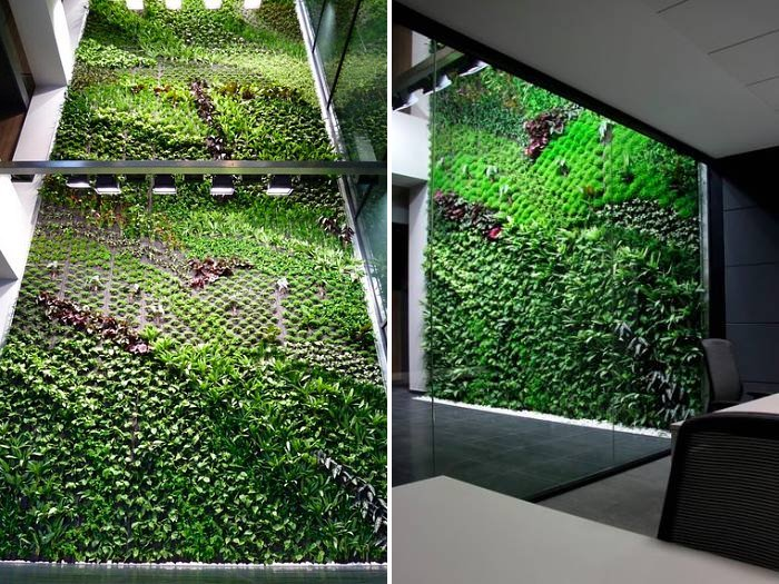 6 Luscious Living Vertical Gardens Bring A Breath Of Fresh Air Indoors Inhabitat Green Design Innovation Architecture Building