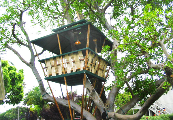 Hooch Bamboo Treehouse Holds Record For Smallest Building