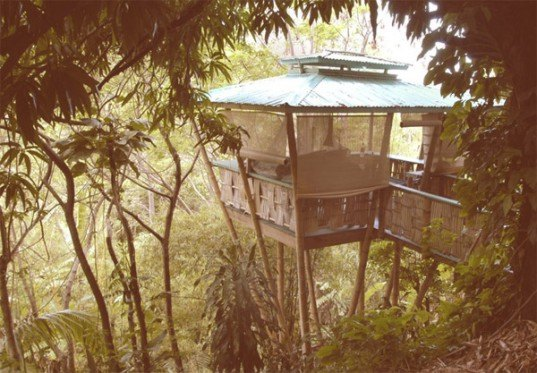 bamboo architecture, eco architecture, bamboo, bamboo treehouse, treehouse, tree house, eco design, green design, sustainable design, hooch, bamboo hooch, luna hooch, sunset hooch, jo scheer, bamboo house, green home, green house