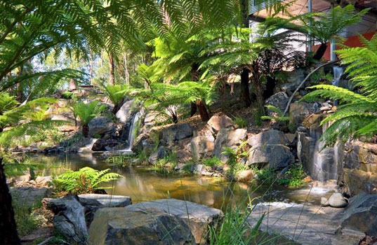 Billabong Natural Swimming Pools Employ Mother Nature To