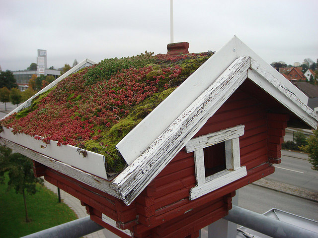 Augustenborg Botanical Garden Is A Red Yellow And Green