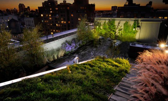 diana balmori, nyc, nyc green roof, green roof, green home, green apartment, green architecture, diana balmori, balmori, eco design, green design, new york city, sustainable design, lower east side apartment, 684 broadway, manhattan penthouse