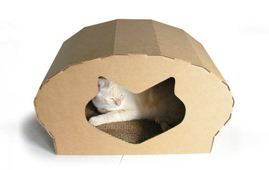 Elizabeth Paige Smith, kittypod dome, kitt