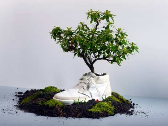OAT, eco-friendly shoes, sustainable shoes, biodegradable fashion, eco-fashion, sustainable fashion, green