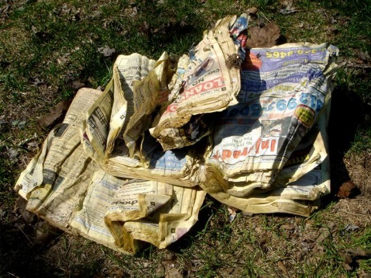 phone book, delivery, paper, waste, recycling, soy ink, printing, website, eco, green, sustainable, rant, yellow pages, directory