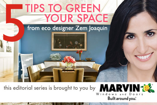 ecofabulous, green home expert, green home, 5 Tips to Green Your Home With zem joaquin, zem joaquin