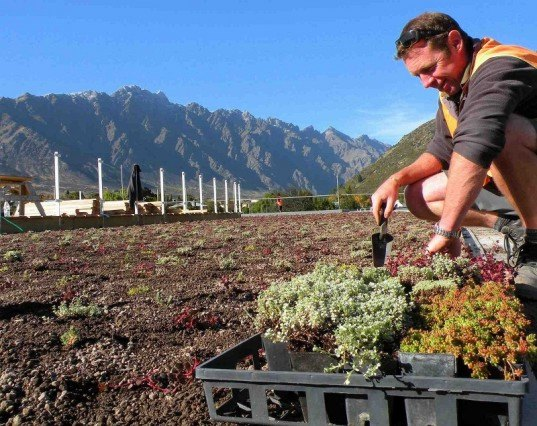 Remarkables-Green-Roof-Installation.jpg, New Zealand, new zealand school, g
