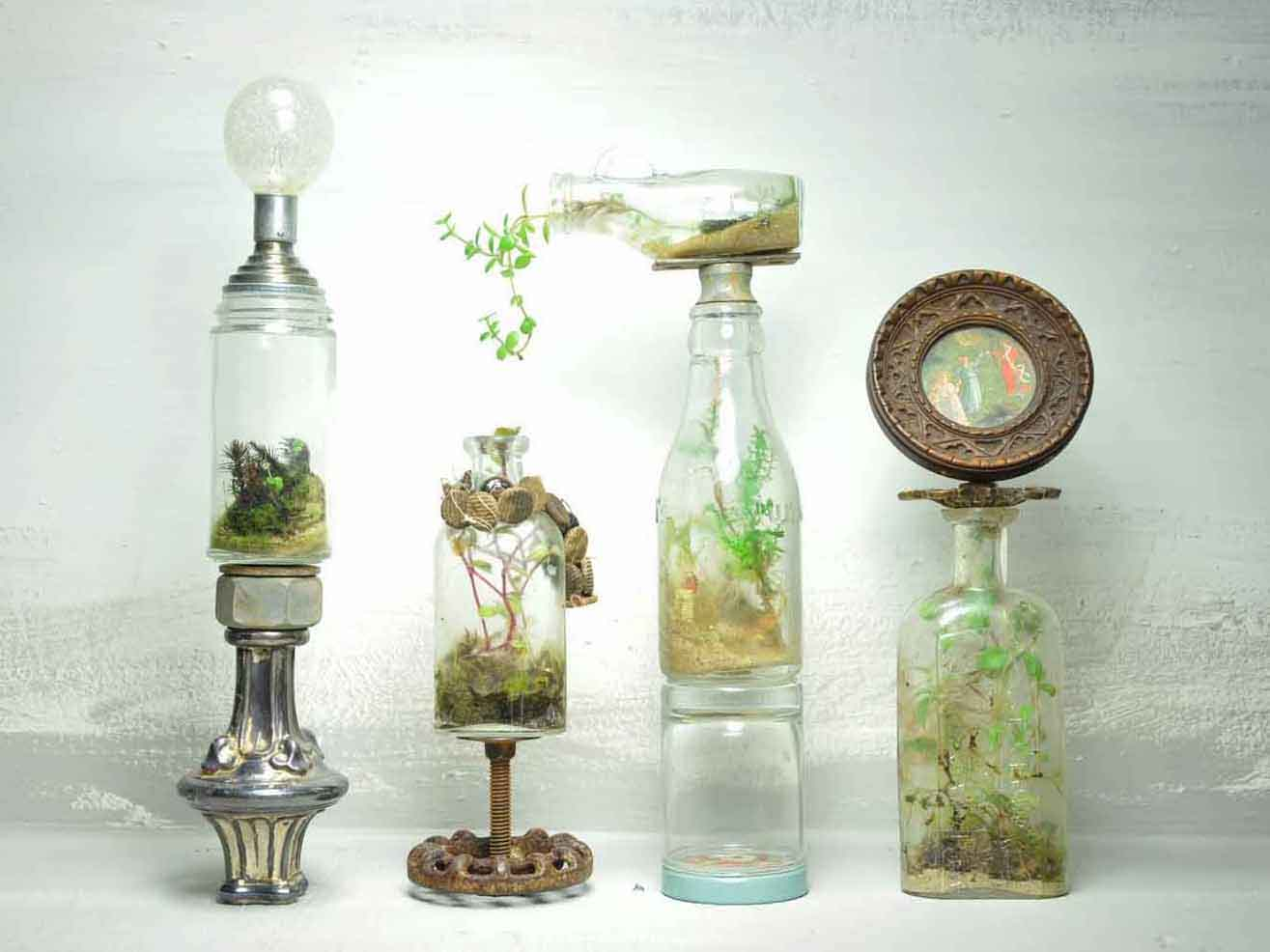 Jose Agatep S Beautiful Repurposed Bottles Terrariums Are Self Contained Ecosystems