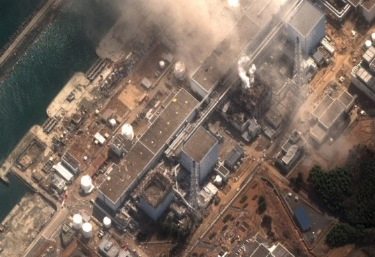 Fukushima, japan, nuclear catastrophe, Richard Lahey, drywell, Robert Peter Gale, Japan nuclear crisis, japan nuclear power plant