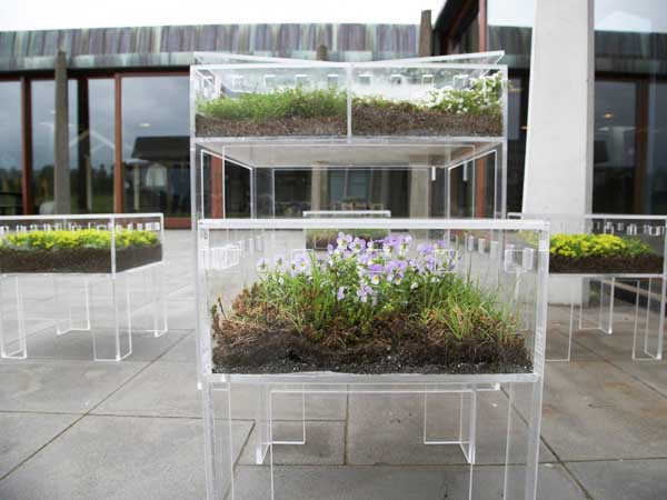 Bjarnadóttir Transparent Furniture FurniBloom 1