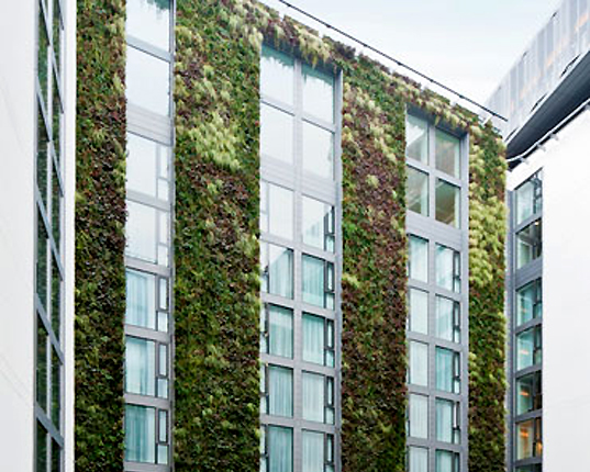 Green Wall Facade : London s mint hotel unveils europe largest living wall