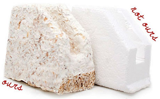 ecovative, car parts, mushroom packaging, ford, mycelium, foam, packaging material, cosmetics, oat husks, agricultural waste, reuse, compostable, fungus