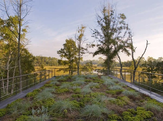 Geothermal HVAC, River Road House, Charleston, South Carolina, energy efficient lighting, recycled materials, reclaimed cypress, passive design, green roof, rainwater harvest, Whitney Powers