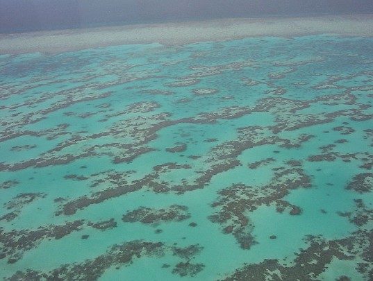 Great Barrier Reef, rising CO2 levels, Australia pollution, Great Barrier Reef report, Great Barrier Reef co2, Great Barrier Reef coral, Great Barrier Reef bleaching, Great Barrier Reef australian government, Great Barrier Reef climate change