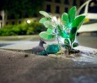 Implanted Nature: Light Artists Luzinterruptus Spotlight 50 Tiny Plants on the Streets of Madrid