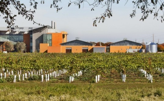 UC Davis WBF Lab, Flad Architects, sustainable wine, wine making, eco laboratory, Robert Mondavi Institute
