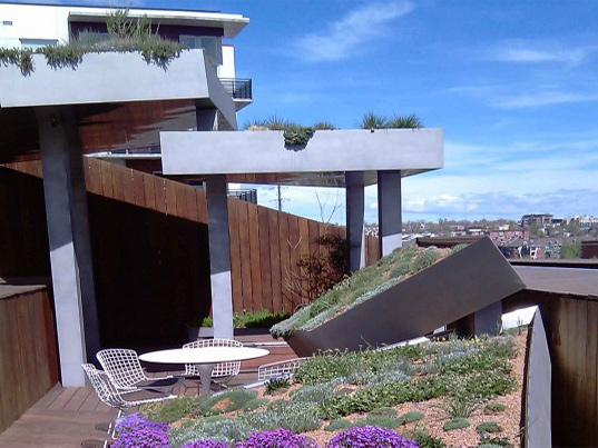 Green Roofs for the West Symposium,  U.S. Green Building Council, University of Colorado, denver botanic gardens, green roofs, plant
