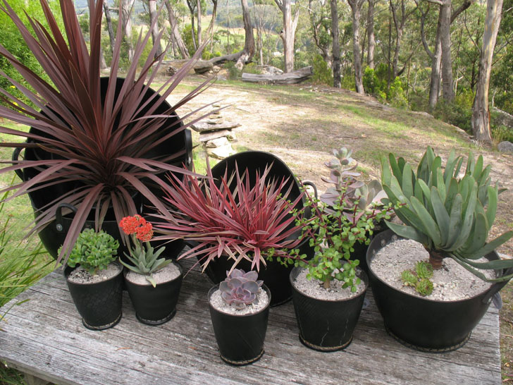 Cool Planters Made From Recycled Tires Inhabitat Green