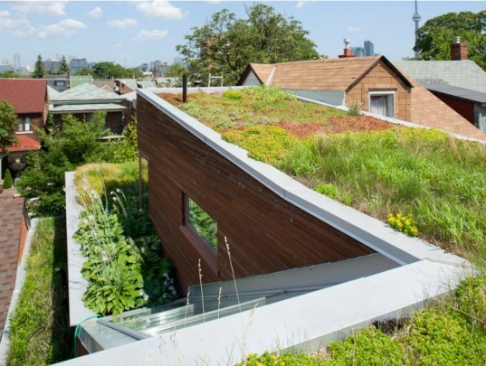 Euclid Avenue House, Levitt Goodman Architects, Toronto, green roof, urban infill lot, green home, green roofed home