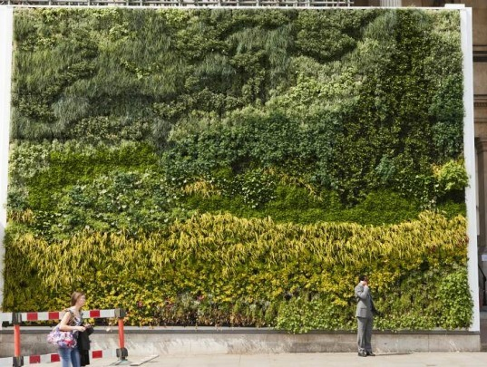 Living wall, van gogh, a wheatfield with cypresses, vertical garden, the national gallery, ans living wall system, london