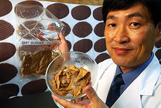 recycled human excrement, turd burgers, poop burgers, meat alternative, Environmental Assessment Center, Japan, Mitsyuki Ikeda, greenhouse gas emissions, meat packing industry, methane, vegetarianism