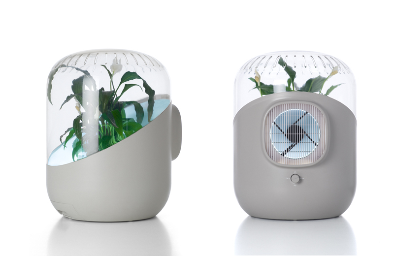 Video Andrea Air Purifier Uses A Plant To Clean The In Your Home