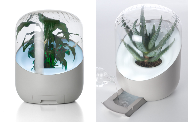 Video Exclusive Andrea Air Purifier A Partnership Between Man And Plant