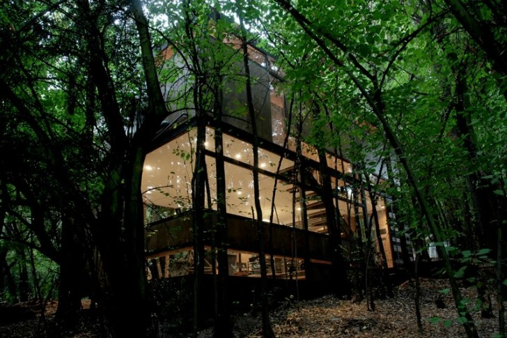 Low Impact Apollo 11 House Lands Silently In The Forest As