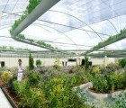 Dutch Polydome Could Be Used to Provide the Majority of NYC's Food