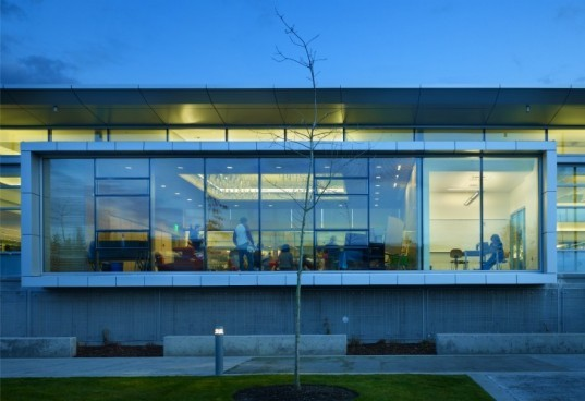 Sammamish Library, Perkins and Will, library, green roof, daylighting, washington, eco library