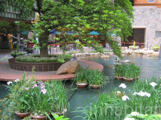canal city, hakata, canal mall, green mall, green wall, vertical garden, eco design, green design, sustainable design, japanese architecture, eco architecture, green architecture, sustainable architecture, energy savings