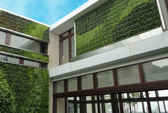 diy, green design, eco design, sustainable design, green wall, vertical garden, gardening, gsky