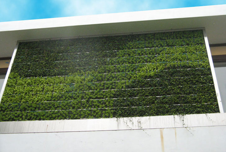 Add Color to Your Yard with Gsky's Succulent Green Walls and ... on plant wall design, vertical wall lighting, tree garden design, vertical edible gardens, vertical wall water feature, small front garden design, vertical garden plans, vertical wall gardening, vertical vegetable garden kits, vertical vegetable garden design, vertical garden ideas, vertical kitchen garden, vertical lighting design, vertical garden apartment, corner garden design, vertical interior design, small modern garden design, indoor vertical garden design, vertical wall construction, vertical garden planting panel,