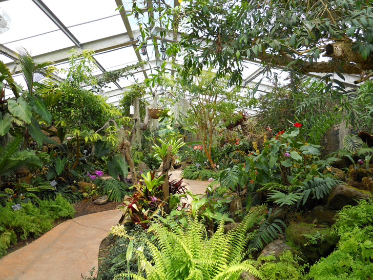 Los Angeles County Arboretum And Botanic Garden Is A Classic In Socal Ecology La Arboretum And