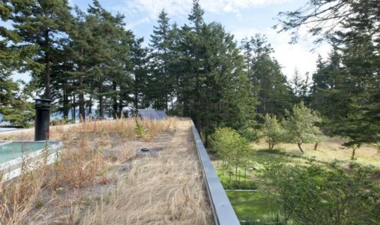 North Beach Residence, Heliotrope Architects, net zero home, summer home, green roof, orcas island, solar power, low impact