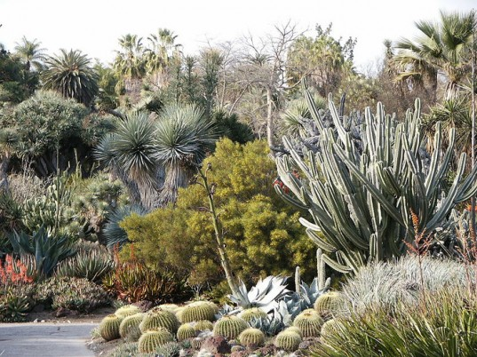 TOP 5 AWESOME LOS ANGELES BOTANICAL GARDENS | Inhabitat   Green Design,  Innovation, Architecture, Green Building