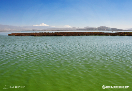 Texcoco Lake Ecological Park Mexico City To Build The