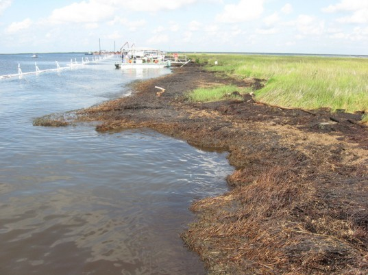 oil spill, oil, deepwater horizon, deepwater horizon oil spill, renewed oil leak,gulf of mexico oil spill,