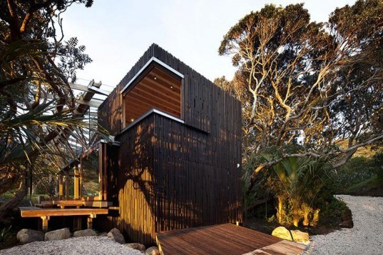 green design, eco design, sustainable design, beach house, herbst Architecture, Pohutukawa trees, New Zealand, Auckland, tree house, glass curtain