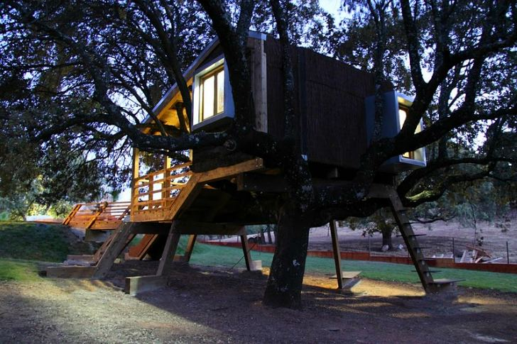 Cork Clad Treehouse Grows Roots Amp Intermingles With The