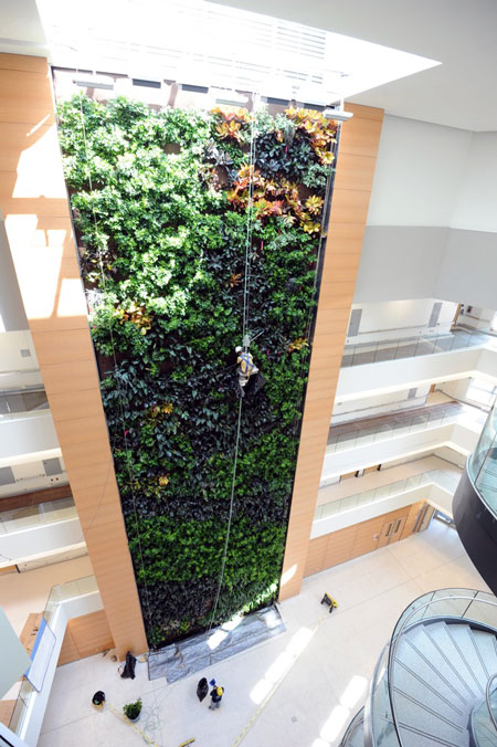 Parker Urban Greenscapes Installs The Largest Biowall In
